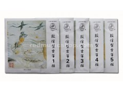 Dunhuang Nylon Guzheng Strings, Type A, 1 Piece, #1 - #21 Selectable