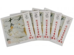 Dunhuang Nylon Guzheng Strings, Type B, 1 Piece, #1 - #21 Selectable